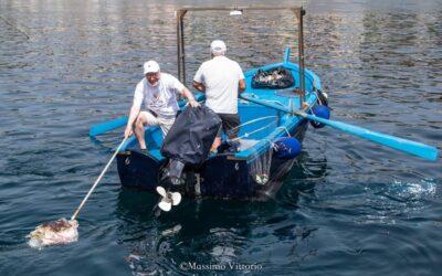 Flavofish Sicily June 2021